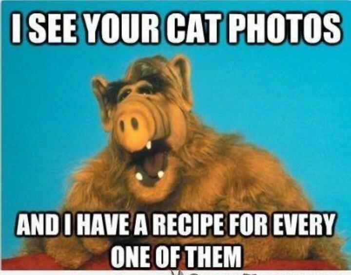 ALFcats.jpg