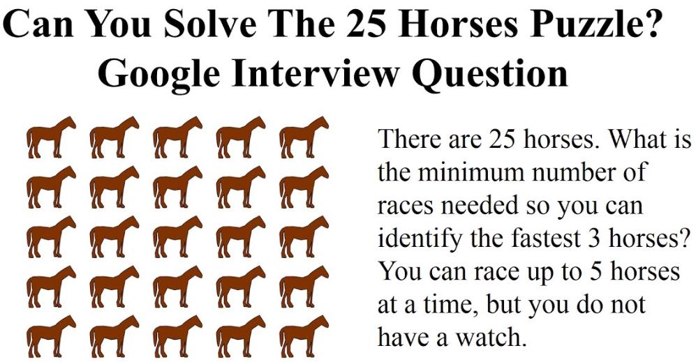Horses25Puzzle